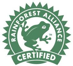 Floresta para todos3